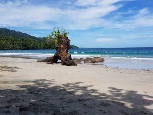 Batu Kopi in front of Bungalow 2